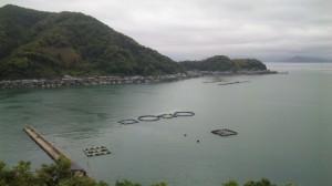 高台から見た舟屋群
